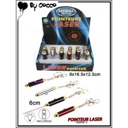 x 24 Pointeur laser (pile incluse)
