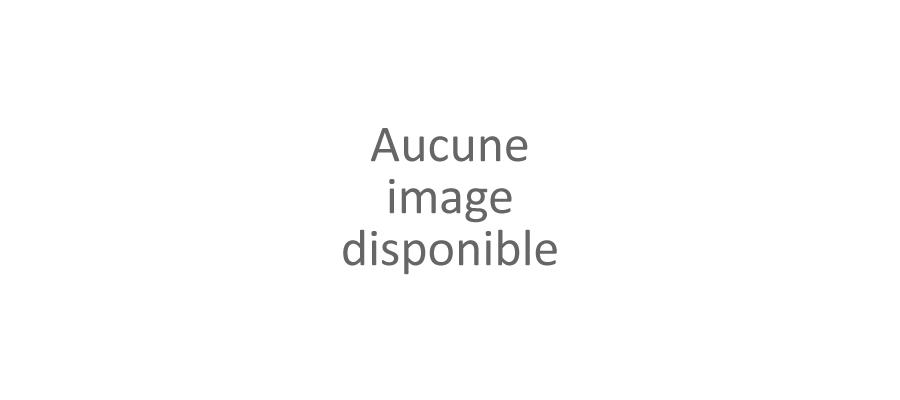Inès Delaure